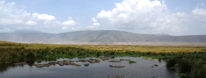 Wasser, grüne Landschaft mit Tieren und Berge mit blauem Himmel in Afrika