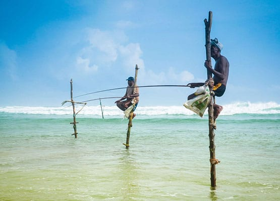 sri lanka malediven paradies im indischen ozean. Black Bedroom Furniture Sets. Home Design Ideas